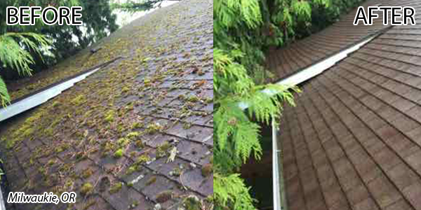 milwaukie-before-after